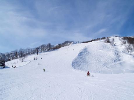 キッズもベテランも大満足! 白馬八方尾根スキー場の魅力に迫る