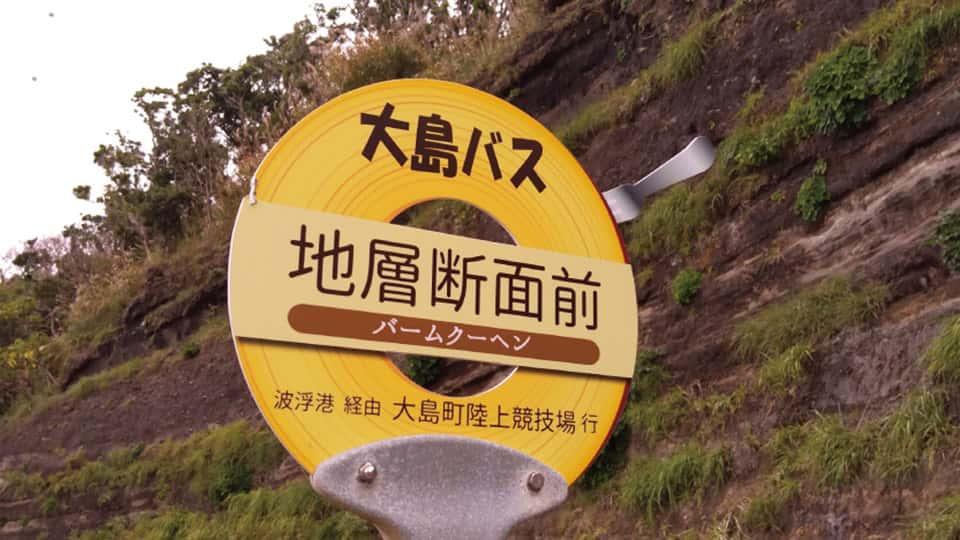 伊豆大島 地層切断面