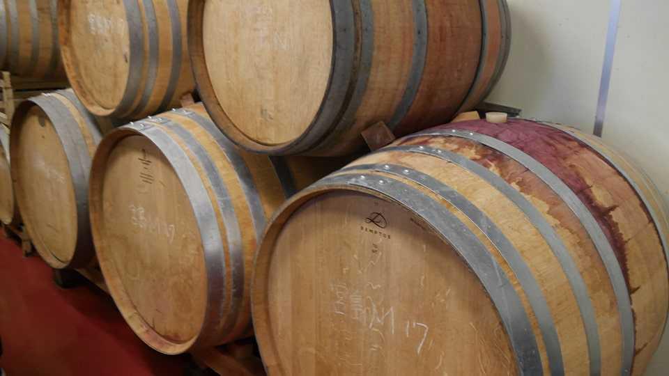 赤富士ワインセラー