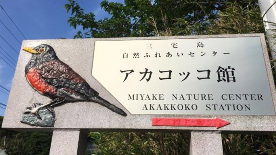 【三宅島】三宅島自然ふれあいセンター・アカコッコ館
