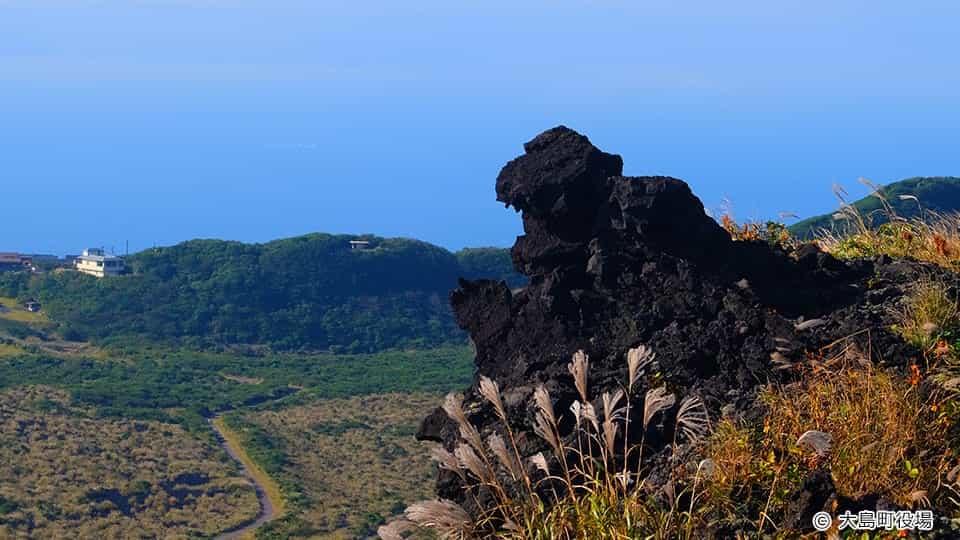 三原山 ゴジラ岩