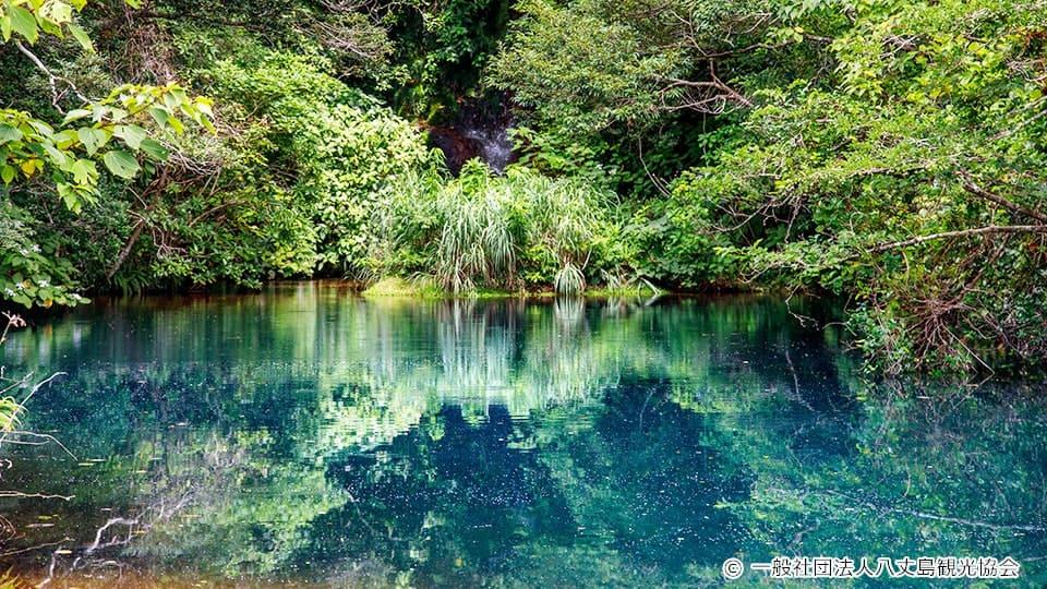 八丈島 硫黄沼