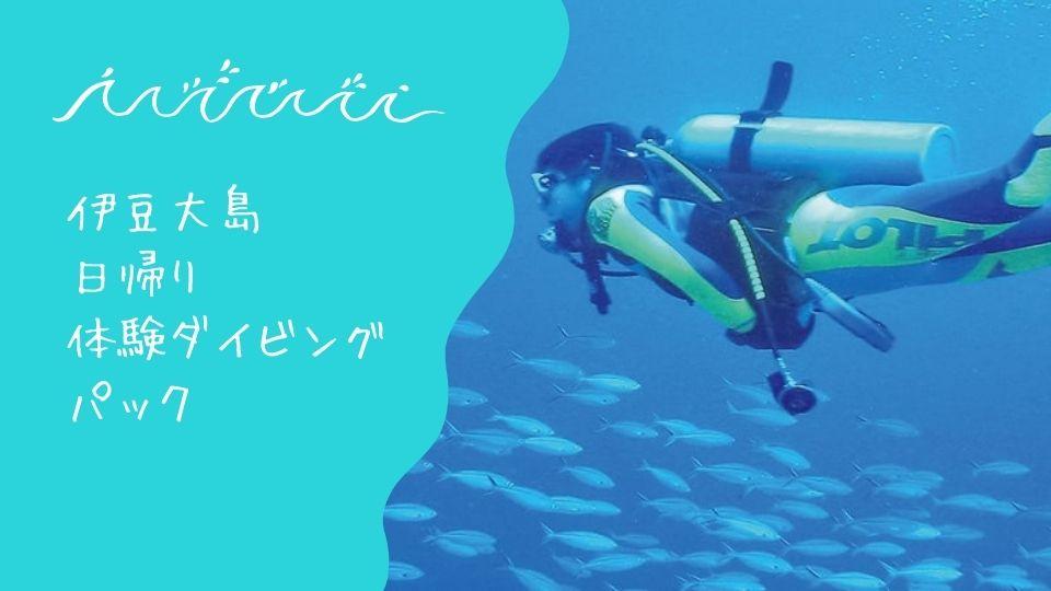 日帰り大島ダイビング