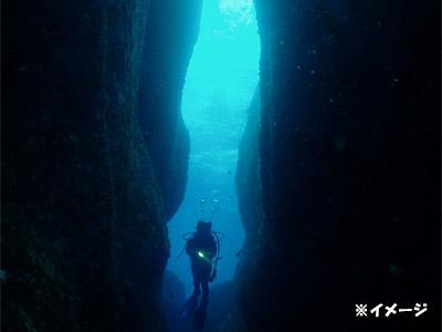 【三宅島】体験ダイビング(現地払い)/ファンダイビング