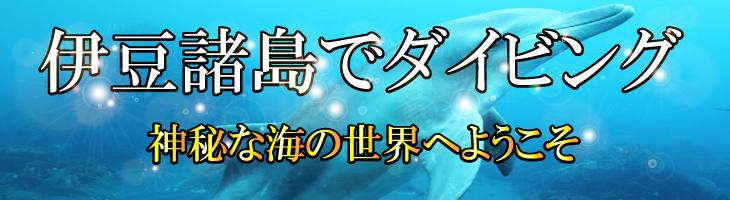 伊豆諸島でダイビング