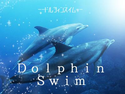 ドルフィンスイムパック☆【民宿クラス】