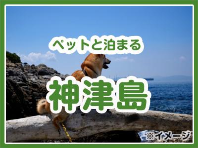 【受付終了】ペットと泊まる神津島