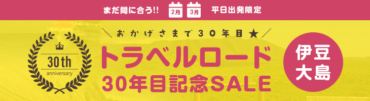 30年目記念SALE