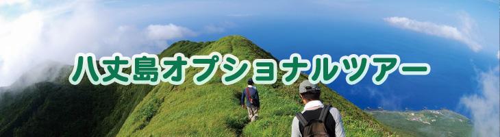 八丈島オプショナルツアー