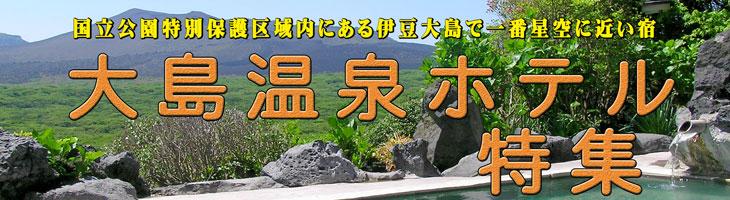 大島温泉ホテルプラン特集