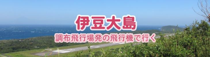 伊豆大島へ 調布飛行場発の飛行機で行く