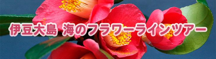 伊豆大島 海のフラワーラインツアー