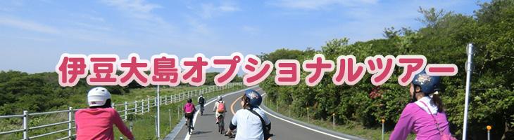 伊豆大島オプショナルツアー