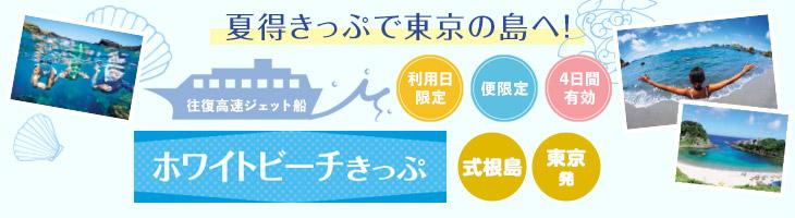 【ホワイトビーチきっぷ利用】式根島へ 東京・竹芝発の船で行く