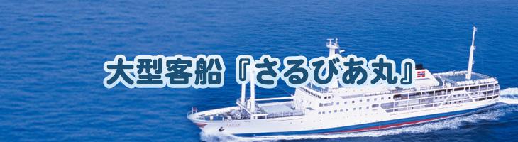 大型客船『さるびあ丸』(大島・利島・新島・式根・神津島航路)