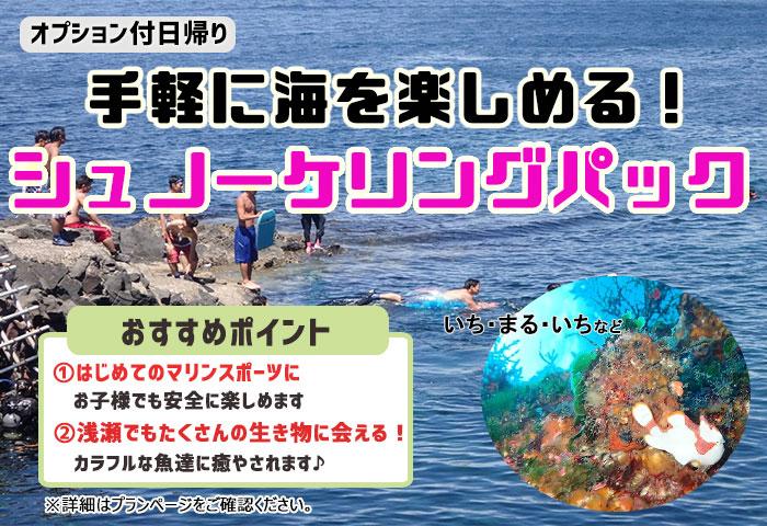 大島日帰り 【シュノーケリングパック】