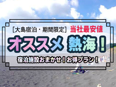 【熱海発着】オススメ!伊豆大島宿おまかせツアー