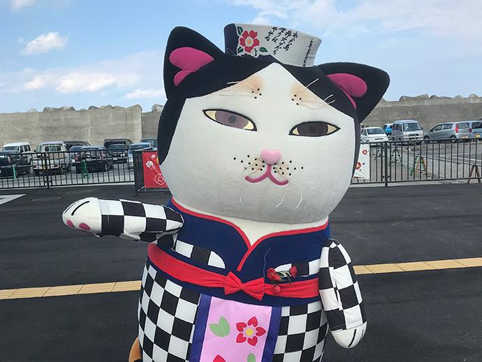 【伊豆大島】あんこ猫