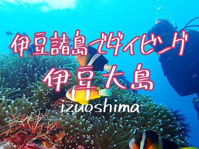 伊豆大島でダイビング!伊豆諸島ツアー