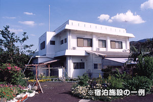 【30周年目特別企画】八丈島素泊まりパック