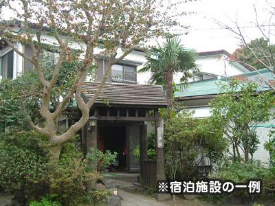 新幹線・熱海発着高速船利用!伊豆大島ハッピーバリュー