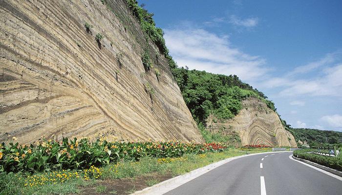 【伊豆大島】地層切断面(バウムクーヘン)