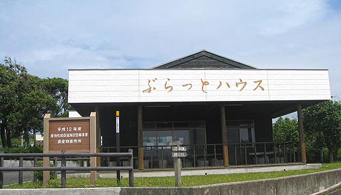 【伊豆大島】ぶらっとハウス