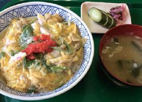 【伊豆大島】もとまちや 鶏肉を独自方法で食べやすくし、卵でとろ~りの自信作です。島のりをトッピングして、味のアクセントに。