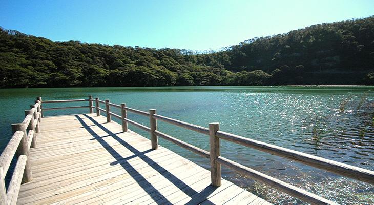 【三宅島】大路池