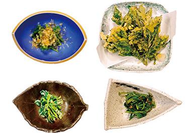 【八丈島】 宝亭 天ぷら、おひたし、ゴマ和え、マヨネーズ和え等で提供。明日葉を色々な味で楽しめます。
