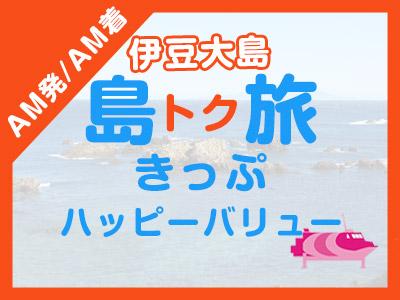 《AM発/AM着》往復JET船☆伊豆大島ハッピーバリュー