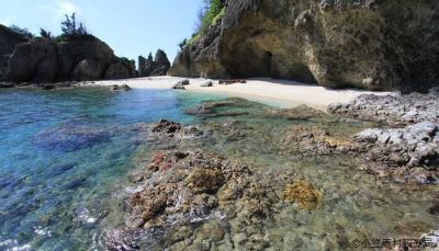 【母島】蓬莱根海岸(ほうらいねかいがん)