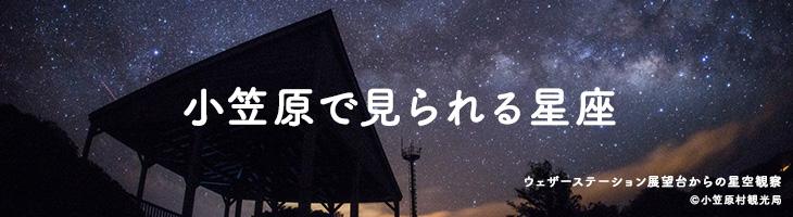 小笠原で見られる星座