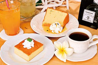 【父島】P.I.R HALE(ハレ) 特産の果実をたっぷり使用したシフォンケーキとベイクドチーズケーキは爽やかな風味と少し控えめな甘さが人気です。