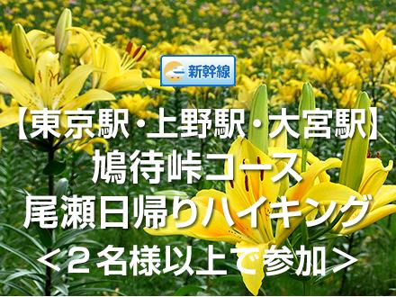 【往復新幹線】鳩待峠入山コース<2名様以上参加>☆日帰り尾瀬