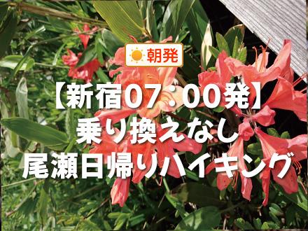 朝発バス/日帰り尾瀬☆鳩待峠入山コース