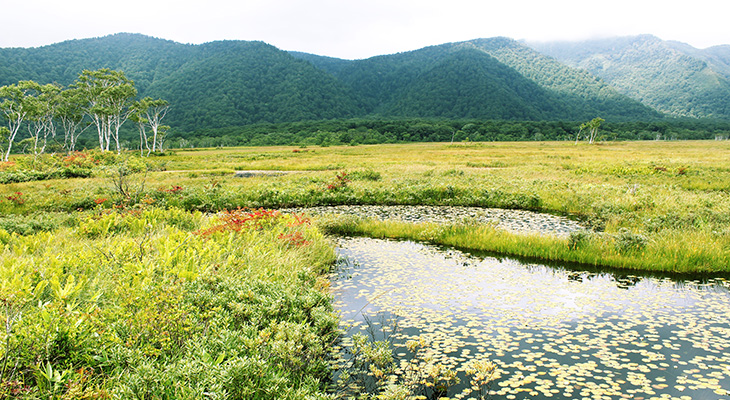 池塘(ちとう)