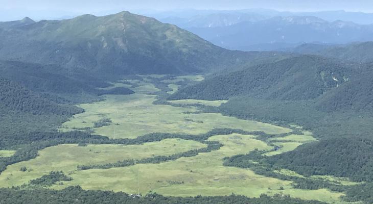 拠水林 帯状の森は拠水林(きょすいりん)と呼ばれる林で、川が流れています。