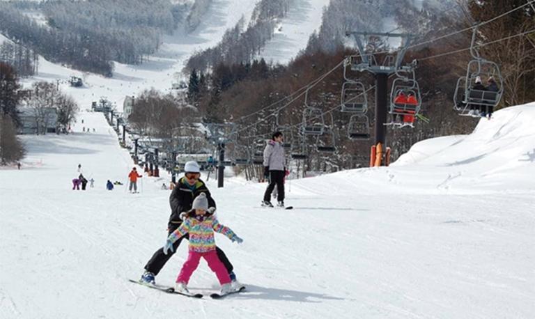 場 流れ は スキー