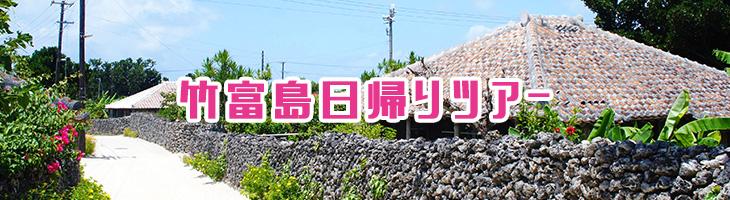 竹富島日帰りツアー